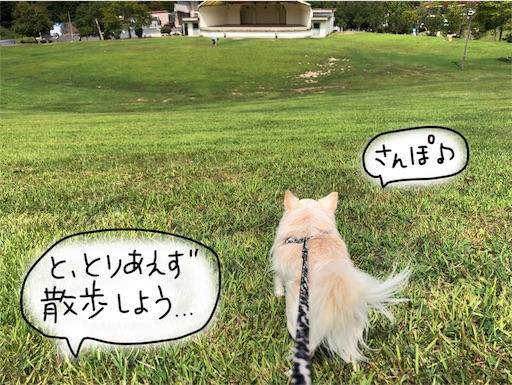 f:id:yukinekokei:20190929213708j:image