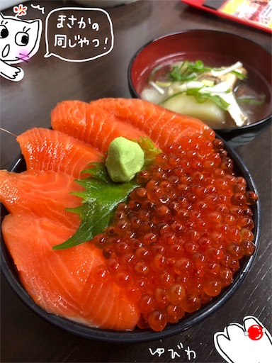 f:id:yukinekokei:20191003082306j:image