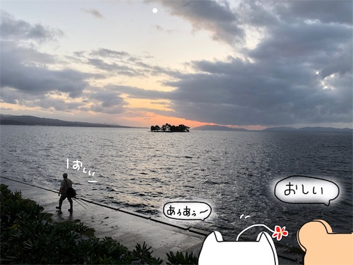 f:id:yukinekokei:20191009204359j:image