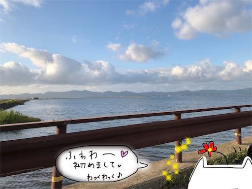 f:id:yukinekokei:20191010100436j:image
