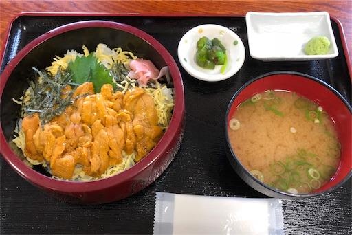 f:id:yukinekokei:20191010204127j:image