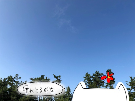 f:id:yukinekokei:20191012120948j:image