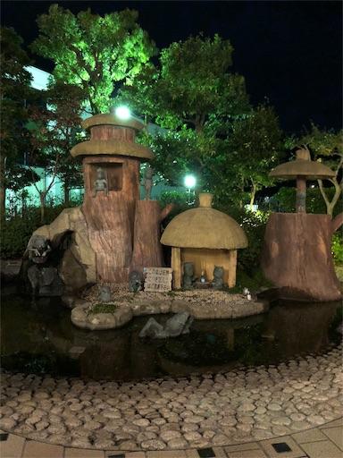 f:id:yukinekokei:20191013164313j:image
