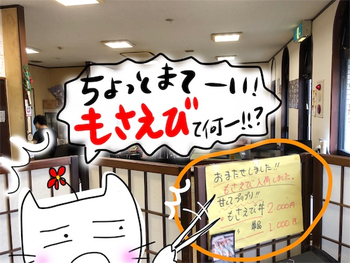 f:id:yukinekokei:20191013195254j:image