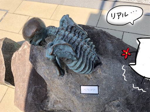 f:id:yukinekokei:20191014221605j:image