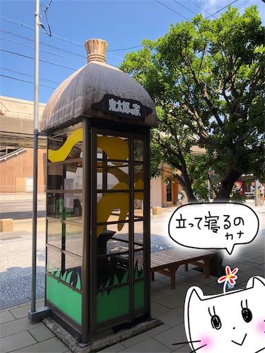 f:id:yukinekokei:20191015123532j:image