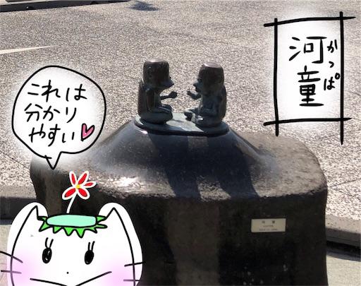 f:id:yukinekokei:20191015222126j:plain