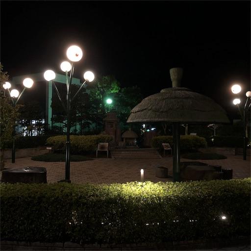 f:id:yukinekokei:20191017141100j:image