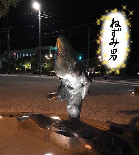 f:id:yukinekokei:20191018082313j:plain