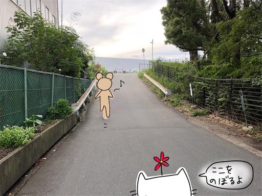 f:id:yukinekokei:20191022154908j:image