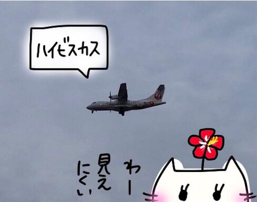 f:id:yukinekokei:20191022194756j:image