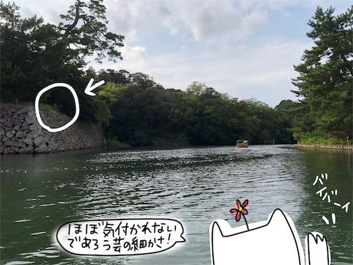 f:id:yukinekokei:20191023124554j:image