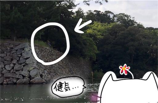 f:id:yukinekokei:20191023224730j:plain