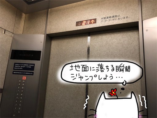 f:id:yukinekokei:20191029222928j:image