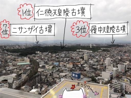 f:id:yukinekokei:20191030102029j:image