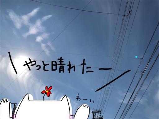 f:id:yukinekokei:20191031224424j:plain