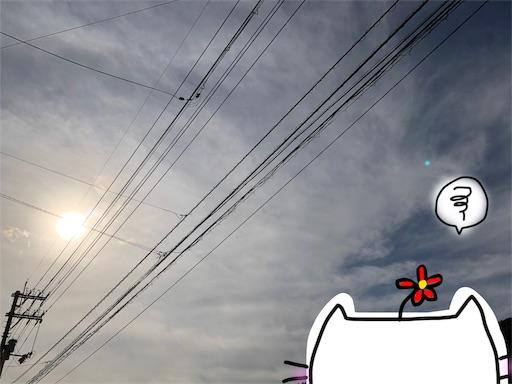 f:id:yukinekokei:20191031224437j:image
