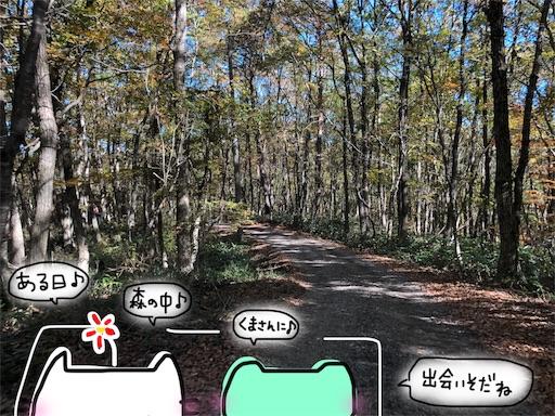 f:id:yukinekokei:20191106212416j:image