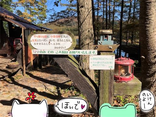 f:id:yukinekokei:20191106213947j:image