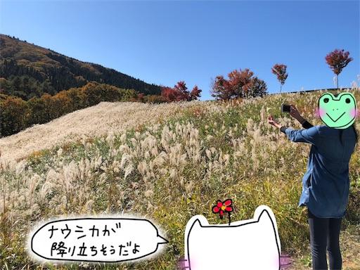 f:id:yukinekokei:20191106235722j:image