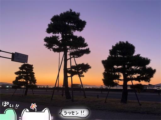 f:id:yukinekokei:20191108110341j:image