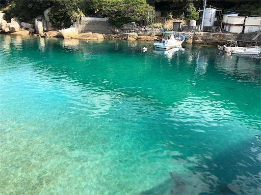 f:id:yukinekokei:20191111223441j:image