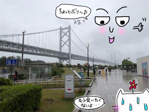f:id:yukinekokei:20191119095332j:image
