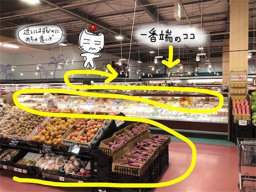 f:id:yukinekokei:20191119221149j:image