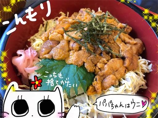 f:id:yukinekokei:20191123105242j:image