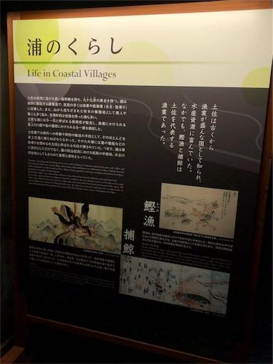 f:id:yukinekokei:20191123205430j:image