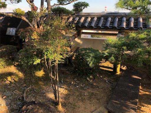 f:id:yukinekokei:20191123205500j:image