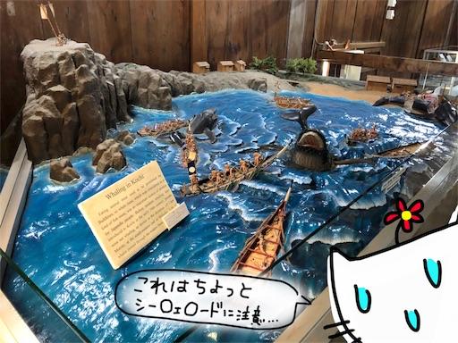 f:id:yukinekokei:20191124001945j:image