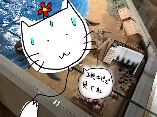 f:id:yukinekokei:20191124001948j:image