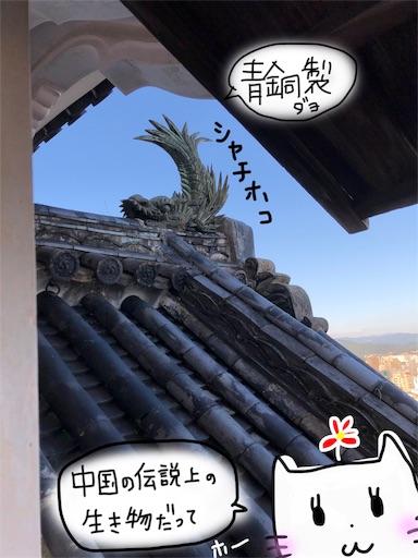 f:id:yukinekokei:20191125123319j:image