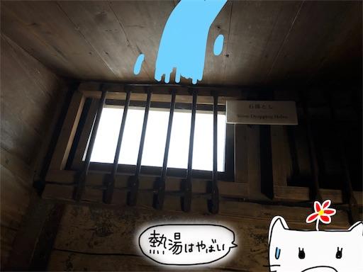 f:id:yukinekokei:20191125124540j:image