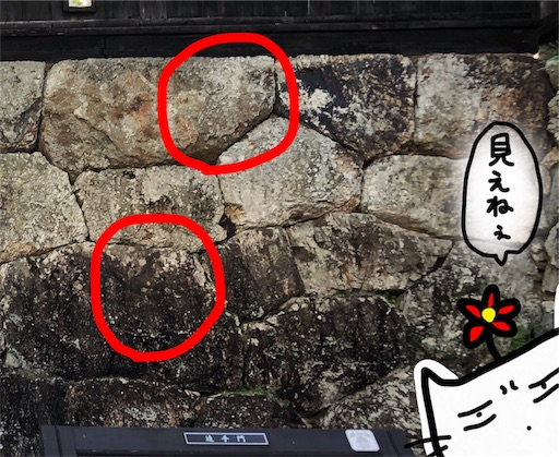 f:id:yukinekokei:20191125222721j:image