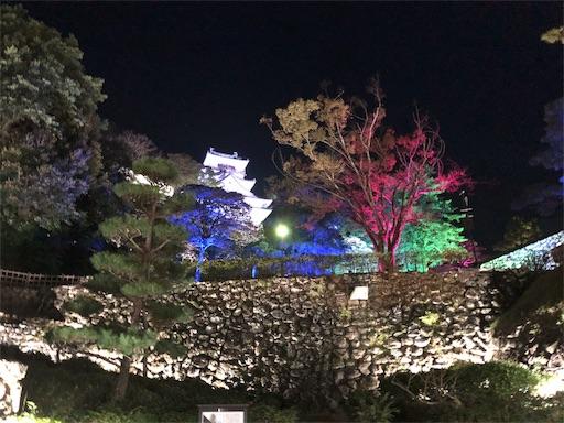 f:id:yukinekokei:20191126090025j:image