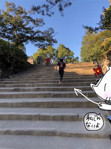 f:id:yukinekokei:20191126093329j:image