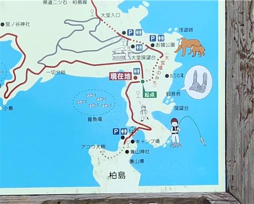 f:id:yukinekokei:20191209204911j:image