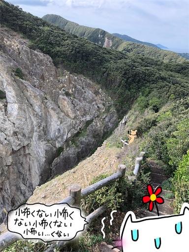 f:id:yukinekokei:20191209212854j:image