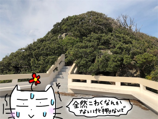 f:id:yukinekokei:20191210230446j:image