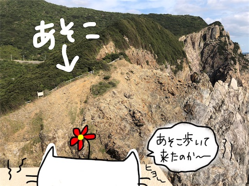 f:id:yukinekokei:20191210231905j:image