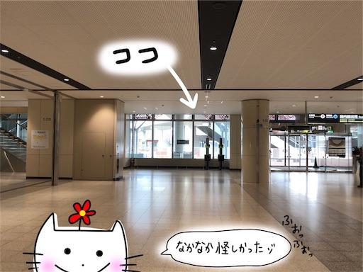 f:id:yukinekokei:20191219133204j:image