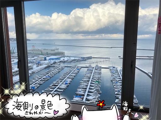 f:id:yukinekokei:20191228082258j:plain