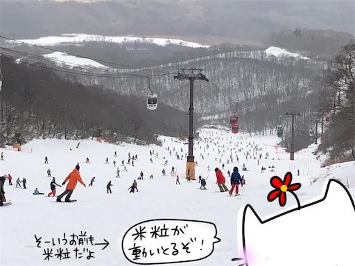 f:id:yukinekokei:20200102125417j:image