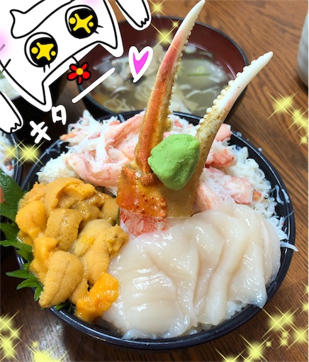 f:id:yukinekokei:20200103194722j:image