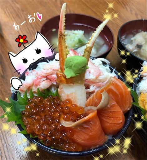 f:id:yukinekokei:20200103194736j:image