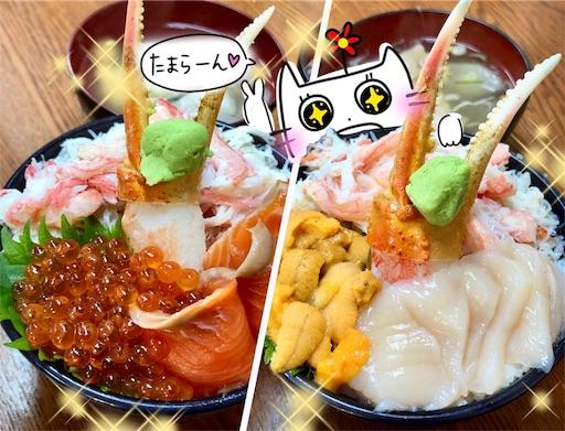 f:id:yukinekokei:20200103205919j:image