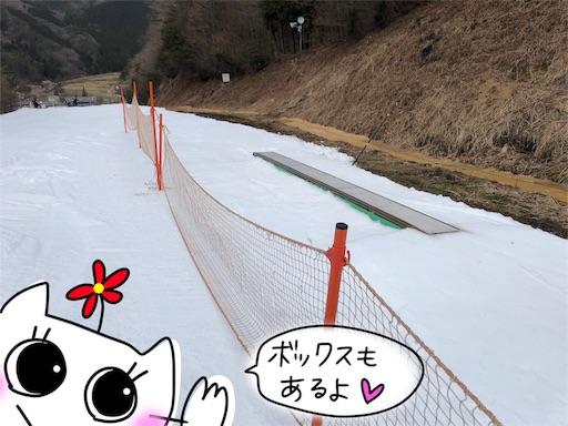 f:id:yukinekokei:20200106203826j:image