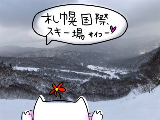 f:id:yukinekokei:20200121031510j:image